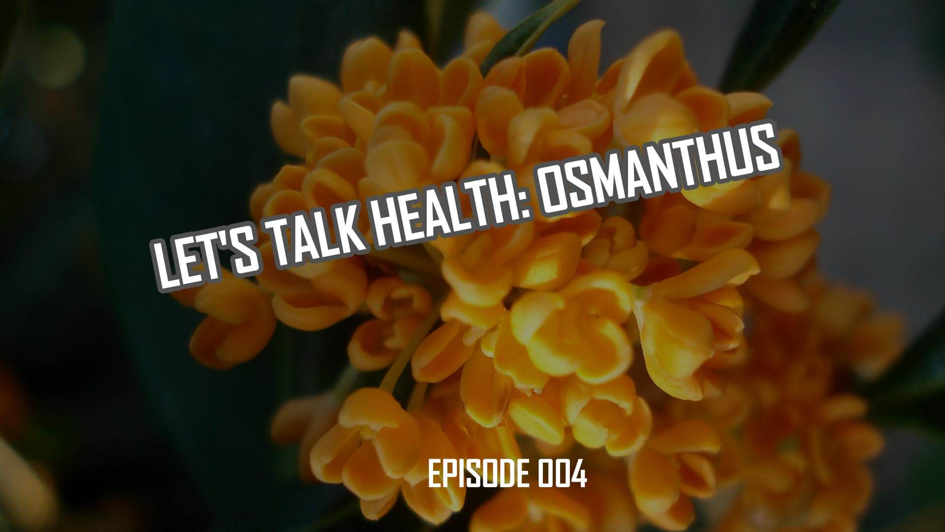 Let's Talk Health: Osmanthus Origins and Benefits (004)