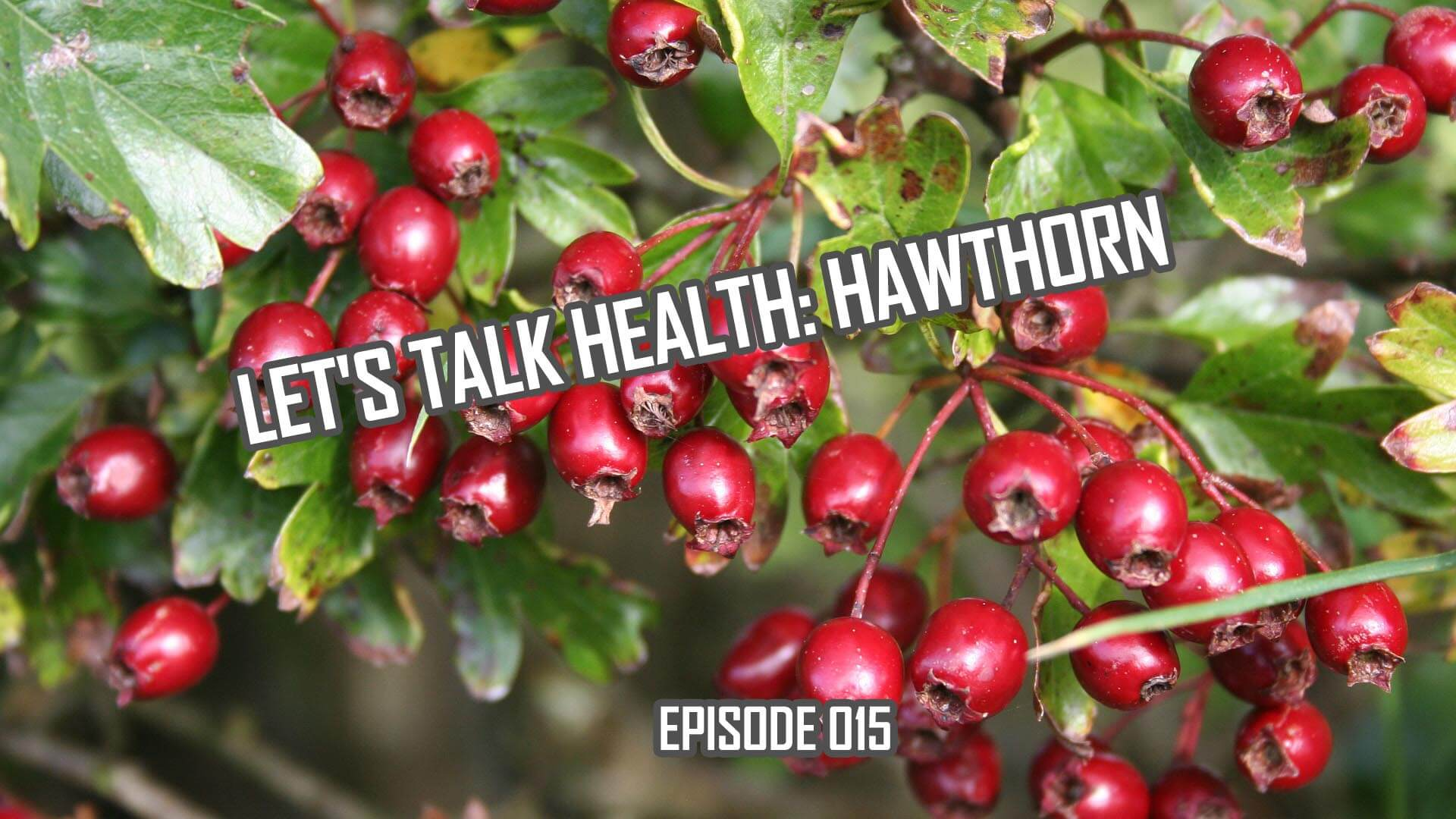 Let's Talk Health: Hawthorn History and Health Effects (014)