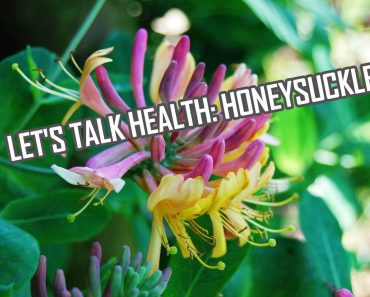 Let's Talk Health: Honeysuckle History and Health Effects
